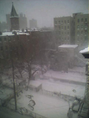 Brooklyn Blizzard Photos: The view from my apartment of the inner courtyard at 331 Keap Street.