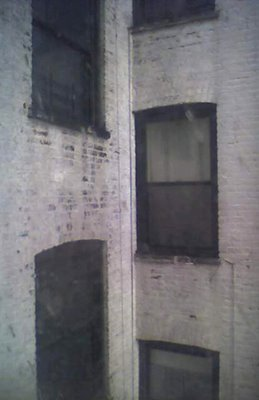 The Windows at 331 Keap Street